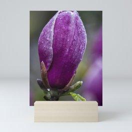 Magnolia Budding Mini Art Print