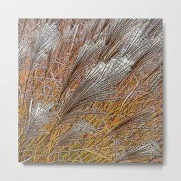 MISCANTHUS GRASS YAKU JIMA IN AUTUMN  Metal Print