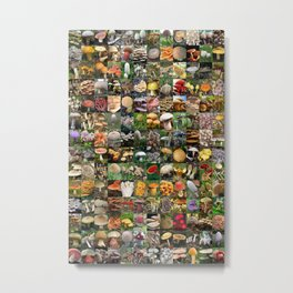 Mushroom Montage Metal Print