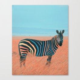 Colorful Zebra Canvas Print