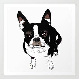 Boston Terrier Cutie Art Print
