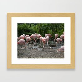 Stop! I lost my contact lens! Framed Art Print