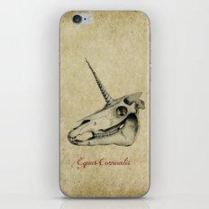 Equus Cornualis iPhone & iPod Skin