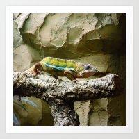 lizard Art Prints featuring Lizard by WonderfulDreamPicture
