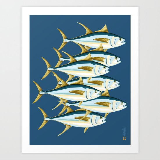 School of Tuna, fish Art Print