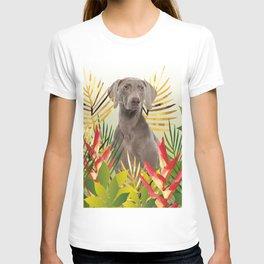 Weimaraner Dog in garden T-shirt