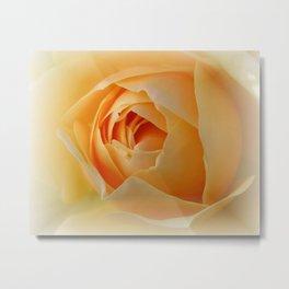 Yellow Graham Thomas Rose Metal Print