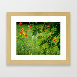 Through the Hedge. Framed Art Print