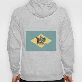 Flag of Delaware Hoody