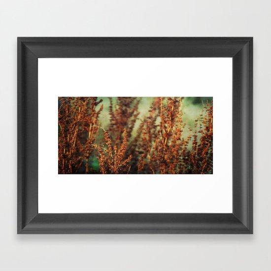 autumnal impression Framed Art Print