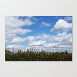 """Corn field in autumn with """"popcorn"""" clouds Canvas Print"""