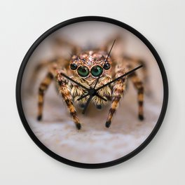 Orange-Brown Jumping Spider Macro Photograph Wall Clock