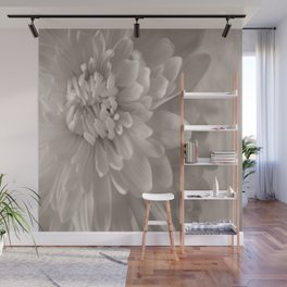 Monochrome Chrysanthemum Close-up Wall Mural