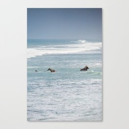 Horses having a bath Canvas Print