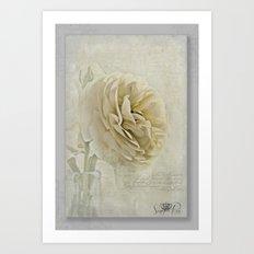 Botanical Notes  Art Print