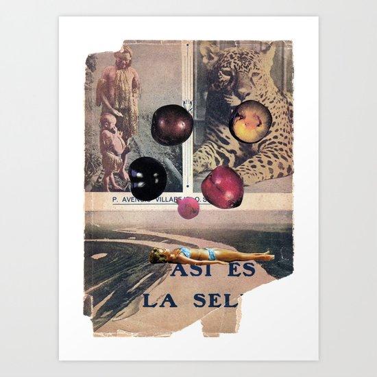 PLUMS Art Print