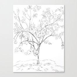Apricot Tree Canvas Print