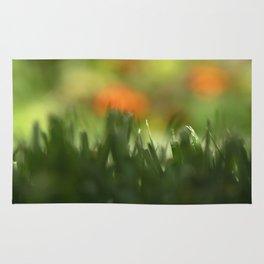 Fuzzy Landscape Rug
