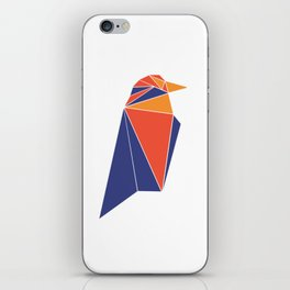 Raven Coin RVN iPhone Skin