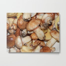 Collect mushrooms in the country in the woods Metal Print