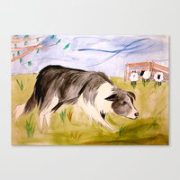 border collie Canvas Prints featuring Border Collie by Caballos of Colour