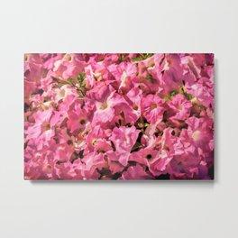 Vintage Pretty Pink Petunias Metal Print
