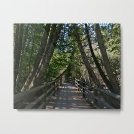 Tahquamenon Walkway Metal Print