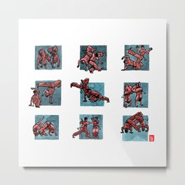 Capoeira 510+ Metal Print