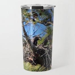 Eaglet In Nest Travel Mug