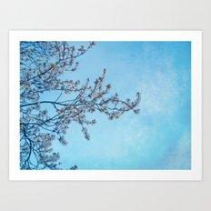 Blossom Blue Art Print