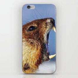 Marmot Yell iPhone Skin