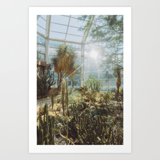 Conservatory by cschoonover