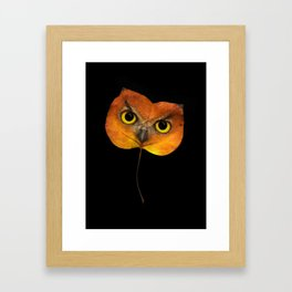 Autumn Owl-2 Framed Art Print