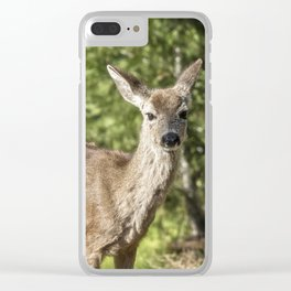 Surely One of the Sweetest Things Clear iPhone Case