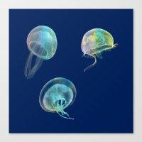 jellyfish Canvas Prints featuring Jellyfish by Vitta