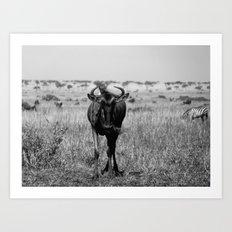 Wildebeest in Maasai Mara Art Print