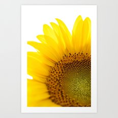 Sunflower Detail - Yellow Art Print