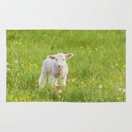 Little Lamb Rug