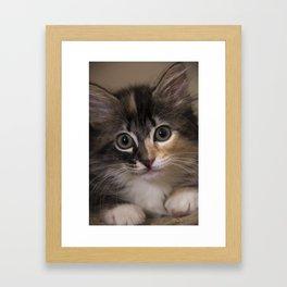 Lady Arbor Framed Art Print
