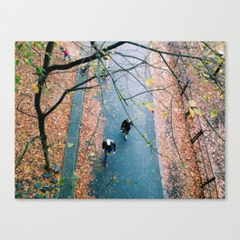 stride by Canvas Print