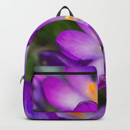 Cocuses Backpack