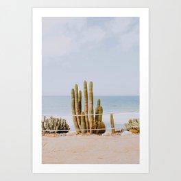 San Diego / California Art Print