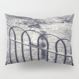 The Lonely Squirrel Pillow Sham