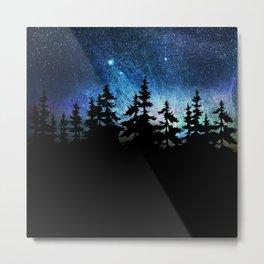 stary sky Metal Print