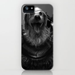 Lord Pup of Caninia iPhone Case