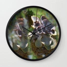 Backyard Light Play Wall Clock
