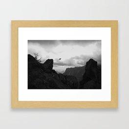 Raven in Flight Framed Art Print
