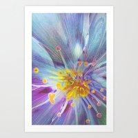 blossom Art Prints featuring Blossom by Klara Acel