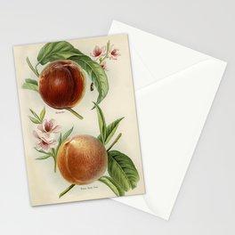 Paon grille fer forge Cigales et groseiller linge damasse Libellules et pissenlit dentelle from Lani Stationery Cards