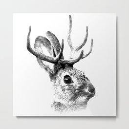 Jackalope Metal Print